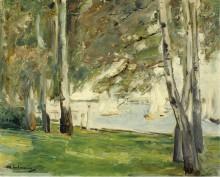Березы на берегу озера Ванзе, 1924 - Либерман, Макс