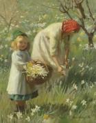Нарциссы в лесу весной - Харви, Гарольд