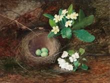 Гнездо дрозда, первоцветы и цветущая груша - Гримшоу, Джон Аткинсон