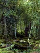Лесная глушь, 1872 - Шишкин, Иван Иванович