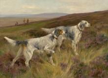 Два английских сеттера на траве - Уордл, Артур