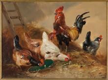 Петух и курицы в хлеву - Схаутен, Хенри