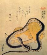Змея - Кацусика, Хокусай