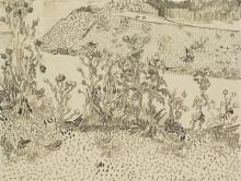Чертополох на обочине дороги (Thistles by the Roadside), 1888 - Гог, Винсент ван