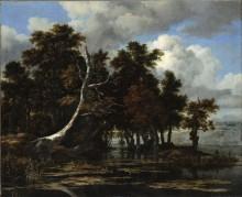 Дубы у озера с кувшинками - Рейсдал, Якоб Исаак