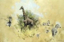 Зебры и жираф - Шеперд, Девид (20 век)