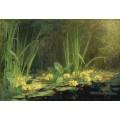 Пруд с лягушками , 1908 - Монтезен, Пьер-Эжен