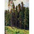 Лес, 1892 - Шишкин, Иван Иванович