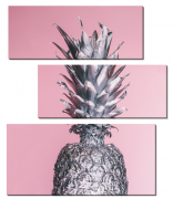 Серебристый ананас_2
