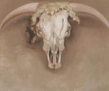 Череп молодого бычка - О'Кифф, Джорджия