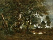 Лес в Фонтенбло - Руссо, Теодор