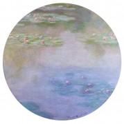 Лилии (1907) - Моне, Клод