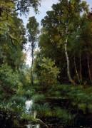 Заросший пруд у опушки леса. Сиверская, 1883 - Шишкин, Иван Иванович