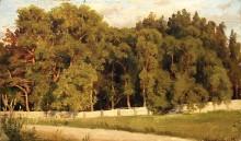 Лес за оградой, 1898 - Шишкин, Иван Иванович