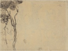 Набросок сосен (Sketch of Pine Trees), 1889 - Гог, Винсент ван