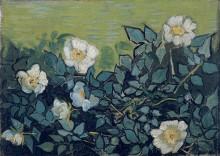 Дикие розы, 1890 - Гог, Винсент ван