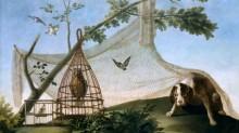 Охота на приманку - Гойя, Франсиско Хосе де