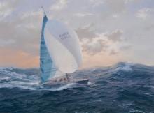Яхта Трейси Эдвардс 'Мэйден' в Южном океане 1 января  1990 года - Дьюз, Джон Стивен