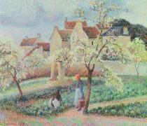 Пейзаж с цветущими сливами - Писсарро, Камиль