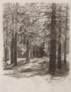 Ели, освещенные солнцем, 1880-е - Шишкин, Иван Иванович