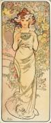 Цветы - розы - Муха, Альфонс