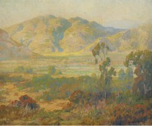 Панорама пустыни - Браун, Морис