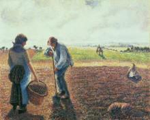Крестьяне в поле, Эраньи - Писсарро, Камиль