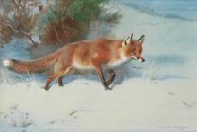 Зимний пейзаж с лисицей - Торберн, Арчибальд