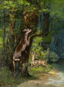 Лесной пейзаж с оленями - Курбе, Гюстав