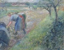Работающие крестьяне, Понтуаз, 1880 - Писсарро, Камиль