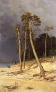 Песчаный берег, 1879 - Шишкин, Иван Иванович