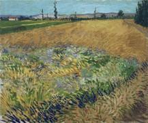 Пшеничное поле и предгорье Старых Альп на заднем плане (Wheat Field with the Alpilles Foothills in the Background), 1888 - Гог, Винсент ван