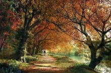 Осенний пейзаж - Девисон, Доминик