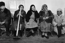 Виноградник Рабочие ожидании автобуса - Шербел, Шепард
