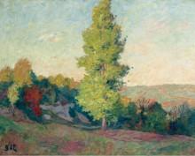 Пейзаж, 1900 - д'Эспанья, Жорж