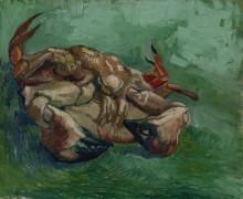 Краб на спине (Crab on It`s Back), 1889 - Гог, Винсент ван