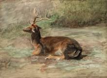 Лежащий олень - Бонёр, Роза