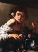 Юноша, укушенный ящерицей - Караваджо, Микеланджело Меризи да