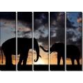 Слоны Африки - Сток
