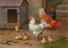 Петух, куры и цыплята у собачьей будки - Хант, Эдгар