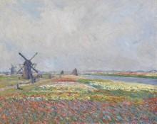 Поле тюльпанов близ Гааги - Моне, Клод