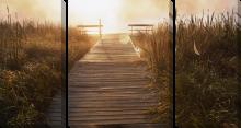 Мост копія