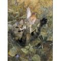 Кошка и зяблики - Лильефорс, Бруно