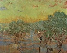 Оливковая роща с фигурами собирателей (Olive Grove with Picking Figures), 1889 - Гог, Винсент ван