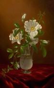 Розы Чероки в стеклянной вазе - Хед, Мартин Джонсон
