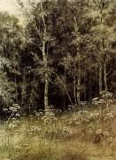 Цветы в лесу, 1877 - Шишкин, Иван Иванович