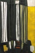 Черное и желтое - Фрост, Терри