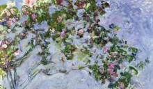 Розы - Моне, Клод