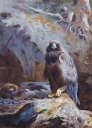 Гнездо беркута - Торберн, Арчибальд