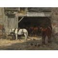 Конюшня с лошадьми для  аренды, 18985-90 - Буден, Эжен